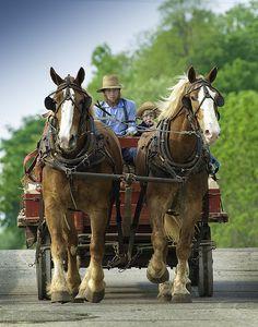 Amish Wagon by Bulaien (Brian Sprague), via Flickr