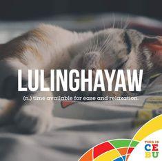 Filipino Words, Alphabet Soup, Relax, Cats, Gatos, Cat, Kitty, Kitty Cats