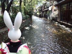 【高瀬川(たかせがわ)を眺む】  高瀬川は江戸時代初(1611年)角倉了似・素庵父子によって、京都の中心部と伏見を結ぶために物流用に開削された運河です。 開削から大正9年までの約300年間京都・伏見間の水運に用いられました。運河であった頃は、現在の鴨川合流点のやや上流側で鴨川を東へ横断したのち、一部区間竹田街道と並行、濠川と合流し伏見港を経て宇治川に合流していました。