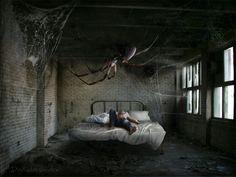 Aracnofobia - paura dei ragni