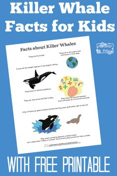 Killer Whale Facts for Kids is part of Science Facts Free Printables - There are so many interesting Killer Whale Facts for Kids! Let's learn with facts about killer whales for kids! Let's learn something about orca shall we Whale Facts For Kids, Animal Facts For Kids, Fun Facts For Kids, Fun Facts About Animals, Science For Kids, Killer Whale Tattoo, Killer Whales, First Grade Projects, School Projects