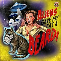 """Aliens Gave My Cat a Beard!"" by Steven Rhodes Strange but true stories! Space Ghost, Space Cat, Magnum Opus, Crazy Cat Lady, Crazy Cats, Funny Videos, Cat Beard, Beard Man, Arte Sci Fi"