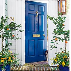 Play the Blues | Strike a high note on an otherwise toned-down entry with a pop of color. This home has classic craftsmanship, such as fluted pilasters and a starburst transom, but what really shines—other than a cute pup—is the deep blue paneled door with shiny brass accessories.