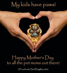 Happy Mother's Day to all the mama's with fur kids out there! I Love Dogs, Puppy Love, Big Dogs, Frases Coaching, Coaching Personal, Amor Animal, Mom Day, Dog Quotes, Dog Sayings