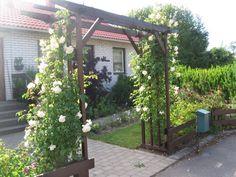 Pergola, Arch, Outdoor Structures, Garden, Fence, Longbow, Garten, Outdoor Pergola, Lawn And Garden