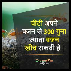 #DreamfirefactsIndia #Factsinhindi #Hindi