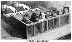 Illustration of a cat piano, from La Nature (1883)