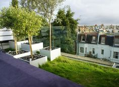 Organic Roofs - Organic Roofs - thriving green roofs that last