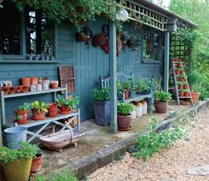 Cottage garden shed Cottage Garden Sheds, Garden Shed Kits, Cottage Garden Plants, Home And Garden, Blue Garden, Cottage Gardens, Back Gardens, Outdoor Gardens, Lakeside Garden