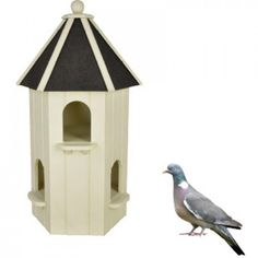 Duiventil wit Pigeon House, Pigeon Bird, Bird House Feeder, Bird Houses, Birds, Lofts, Outdoor Decor, Home Decor, Animals