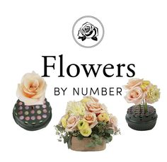 Cut Place Arrange using the Flowers by Number starter kit