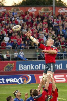 Irish Rugby Lock, Paul O'Connell