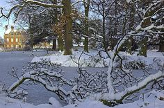 Acklam Hall In the snow