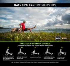 Nature's Gym 101: Triceps dips