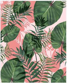 New Nordic Pink Flamingo Flower Diamond Painting Tropical Art, Tropical Garden, Tropical Leaves, Tropical Flowers, Cute Wallpapers, Wallpaper Backgrounds, Iphone Wallpaper, Wall Wallpaper, Mural Floral
