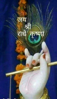 ~ jay shree Krishna... Krishna Hindu, Radha Krishna Love Quotes, Lord Krishna Images, Radha Krishna Photo, Krishna Photos, Radhe Krishna, Good Morning Clips, Good Morning Picture, Good Morning Images