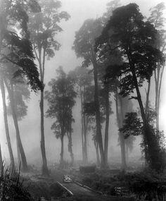 John Swope photograph  Chile, 1939