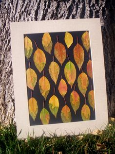 Abstract  Real Pressed Leaves - Organic Natural Art - Eco-Friendly - 11 x 14 Art on Etsy, $39.00