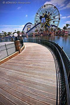 """""""Paradise Pier"""""""