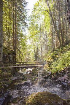 Wandertipp: Geißenpfad in Menzenschwand im Schwarzwald © Hochschwarzwald Tourismus   Mein schönes Land bloggt