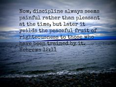 """""""For the moment, all discipline seems painful rather than pleasant, but later it yields the peaceful fruit of righteous by those who are trained by it. Therefore, lift your drooping hands and strengthen your weak knees, and make straight paths for your feet, so that what is lame may not be put out of joint but rather healed."""" -Hebrews 12:11-13 {jan 2011}"""