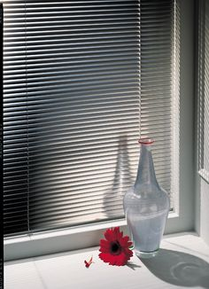 Aluminum Blinds, Cleaning Blinds, Faux Wood Blinds, Dining Room Windows, Faux Wood, Mini Blinds, Kitchen Blinds, Home Decor, Window Coverings