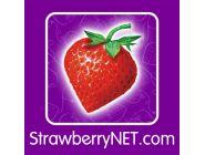 Como morangos frescos, levados diretamente da horta para a sua casa, nossos produtos são novos e autênticos. Empresa 100% internacional, há 10 anos online e milhares de clientes satisfeitos no mundo.