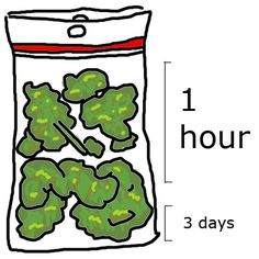 This is a bag of weed. Im not pinning it bc i agree with the picture, which I do. Im pinning it because i stared at it for about five minutes thinking it was a bag of broccoli and it was some stay at home mom cooking relatable hilarous post when in reality its just a bag of canibis.