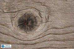 Mantenimiento de una casa de madera: ¿Qué debemos tener en cuenta?