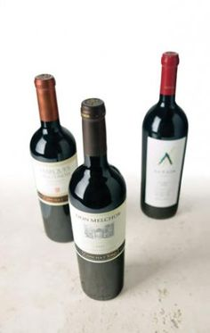 Tasting Notes: Chilean Red Wines