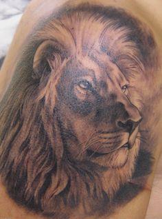 Realistic lion