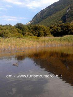 Portonovo's salt lake - Marche, Italy