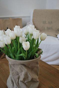 Poche à eau et tulipes blanches dans mon salon