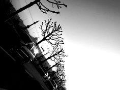 Taken in Geneva, Switzerland. PHOTOGRAPHY BY MIMI HOSAIN