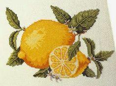 PLANETA PONTO CRUZ 2: Frutas