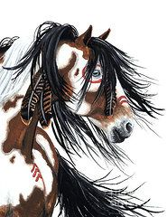 Native American Paintings - Majestic Pinto 29 by AmyLyn Bihrle