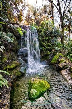 Rainbow Springs state park This One Easy Hike In Florida Will Lead You Someplace Unforgettable Florida Keys, Hiking In Florida, Places In Florida, Florida Springs, Visit Florida, Florida Vacation, Florida Travel, Florida Beaches, Florida Trips