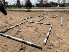 10 Ground Pole Exercises - Ground poles are so much fun to work with. Horse Exercises, Training Exercises, Ground Work For Horses, Horse Camp, Horse Horse, Ranch Riding, Horse Riding Tips, Workout At Work, Riding Lessons