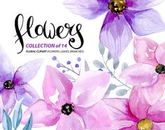 Watercolor flower clipart: 14 purple and by WatercolorCliparts