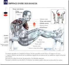 Los mejores ejercicios para triceps