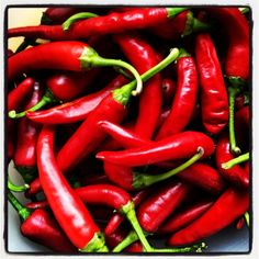 HOT! | Red Chilis