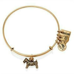 Alex and Ani monopoly dog bracelet gold bangle New with tags Alex and Ani gold finish expandable bangle bracelet Alex & Ani Jewelry Bracelets