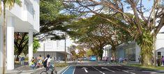 Colectivo 720 + De Arquitectura y Paisaje, segundo lugar en concurso de espacio público en la avenida Sexta de Cali, Colombia,Cortesía de Equipo Segundo Lugar Cali Colombia, Jeddah, Urban Design, Landscape Architecture, Street View, Pageants, Urban Landscape, Advertising, Parks