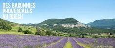 baronnies provençales - vallée du Buëch, champ de lavande Provence, Rhone, Recherche Google, Vineyard, France, Travel, Outdoor, Alps, Lavender Fields