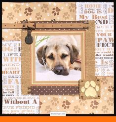 """""""Cooper-Doo"""" — layout using Kaiser Craft """"Furry Friends Collection"""" papers, Ranger texture paste, Adirondack acrylic paint dabber, and miscellaneous extras. Dog Scrapbook Layouts, Scrapbook Templates, Scrapbook Sketches, Scrapbook Paper Crafts, Scrapbook Cards, Scrapbooking Ideas, Scrapbook Journal, Picture Scrapbook, Birthday Scrapbook"""