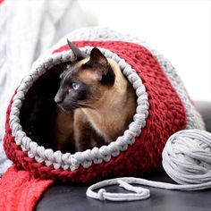 Crochet cat cave t shirt yarn 23 Ideas for 2019 Cat Cave Crochet Pattern, Crochet Patterns, Gato Crochet, Free Crochet, Free Knitting, Pet Beds, Dog Bed, Crochet Crafts, Crochet Projects