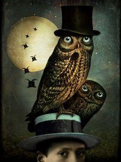 Owl in a Top Hat. ~ by Catrin Welz-Stein Owl Art, Bird Art, Illustrations, Illustration Art, Magie Harry Potter, Image Originale, Photoshop, Tim Walker, Framed Wall Art