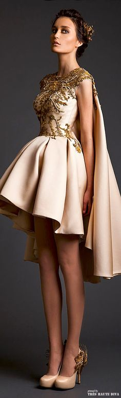 Krikor Jabotian Couture S/S 2014. Not a fan of the skirt but will you just look at that bodice! Georgeous!! This dress make me more attractive and sexy at parties