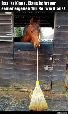 funny picture # sweeping in front of your own door.jpg& Eine von Dateie… funny picture & # sweeping in front of your own door.jpg – One of files in the category & # funny pictures & # on FUNPOT. Humor Videos, Funny Animal Pictures, Funny Animals, Funny Cute, Hilarious, Humor Grafico, Man Humor, Beautiful Horses, Tutorial