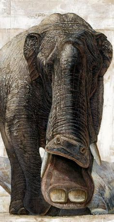 eafbd2613cd 9 Best Extinct Animals images